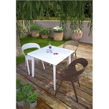Set di 2 sedie color sabbia Carla Resol
