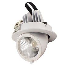 Proiettore per soffitto LED rotondo 12W