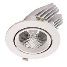 Proiettore per soffitto LED rotondo 36W