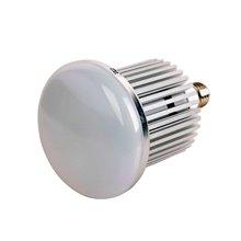 Lampadina LED industriale da 30W