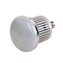 Lampadina LED industriale da 50W