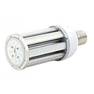 2 lampadine LED da 25 W